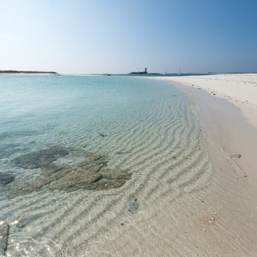 plage ile saint nicolas archipel glenan croisiere evasion