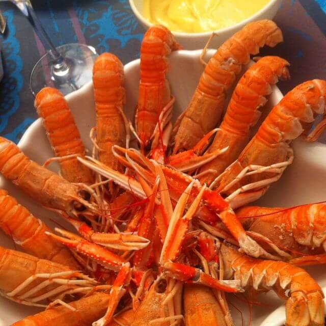 assiette langoustines bateau restaurant vedettes odet