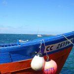 bateau peche iles glenan