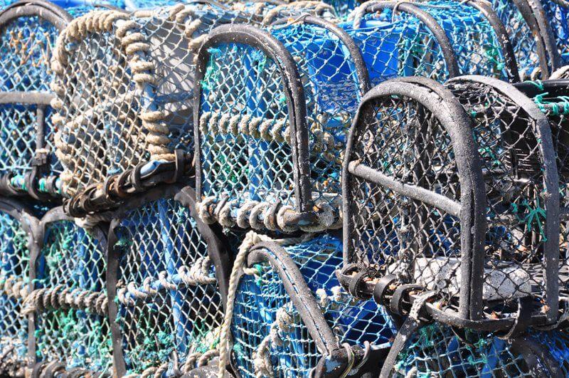 casier peche homard crabe archipel glenan vivier bretagne sud
