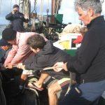 equipage vieux greeement corentin iles glenan manoeuvre