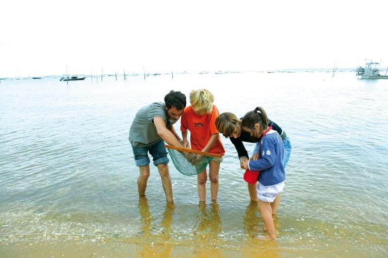 enfants peche pied archipel glenan plage ile saint nicolas