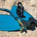 palmes masque tuba snorkeling archipel glenan beaute fonds marins bretagne