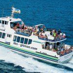 rivage navire rapide vedettes odet glenan suivi courses