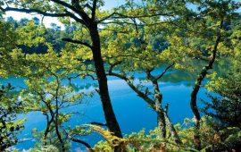 rives boisees riviere odet finistere benodet quimper