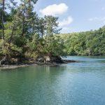 riviere odet vegetation luxuriante finistere bretagne