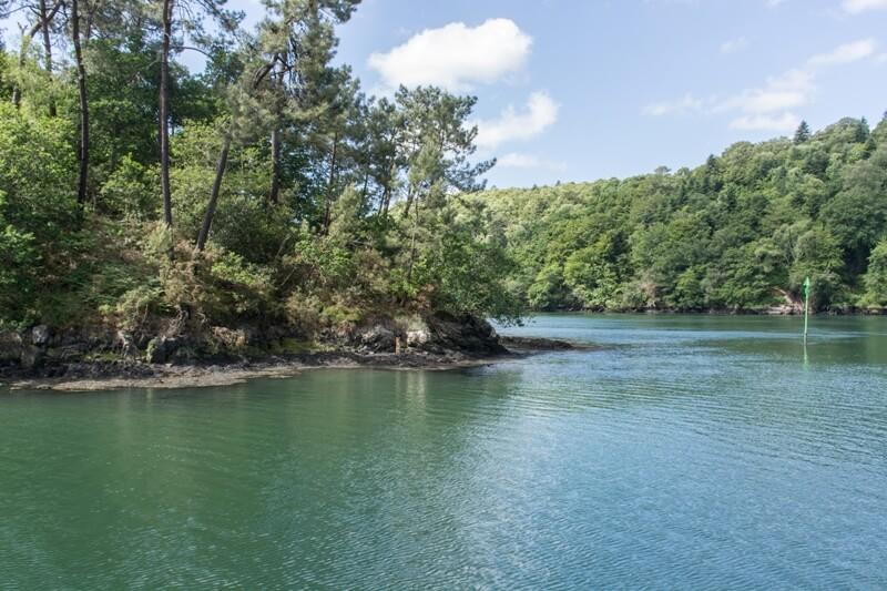 riviere odet rives bois arbres