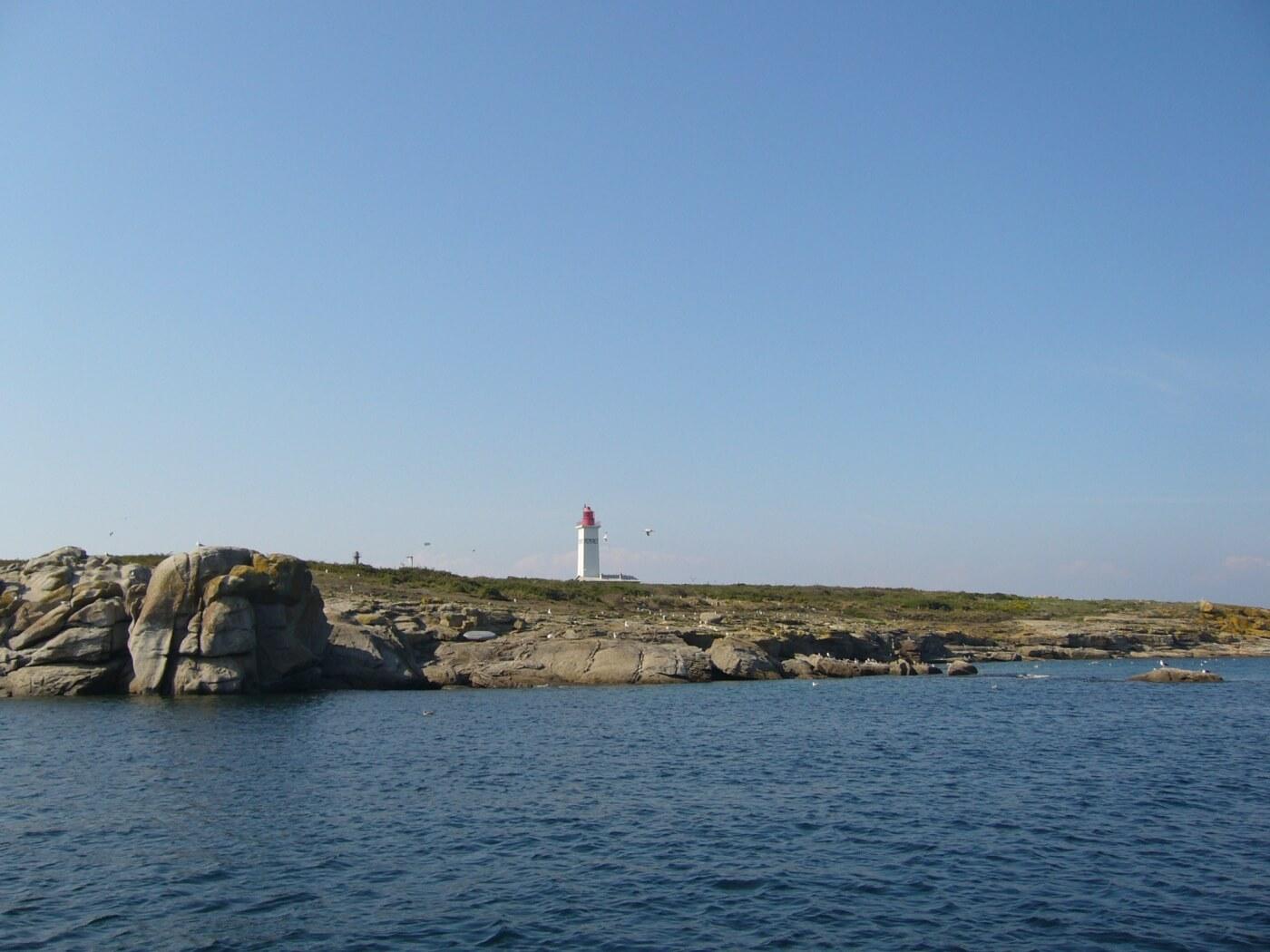 ile penfret archipel glenan reserve ornithologique