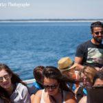 passagers vedettes de l'odet iles glenan
